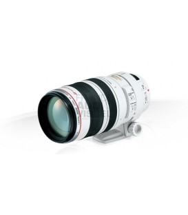 Canon EF100-400mm f/4,5-5,6 L IS USM